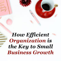 How Efficient Organization is the Key to Small Business Growth