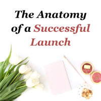 JLVAS-Blog Image-The Anatomy of a Successful Launch