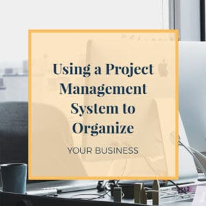 Using a project management system to organize your business