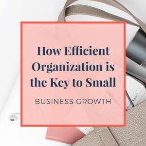 JLVAS-How Efficient Organization is the key to small business growth