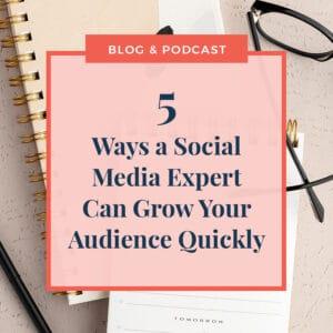 JLVAS -5 Ways a social media expert can grow audience