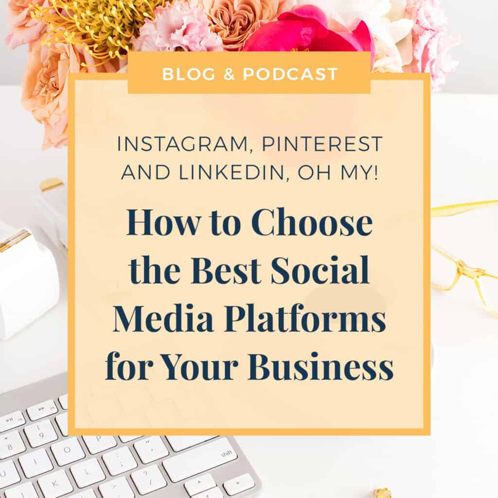 JLVAS New Blog Images-How to choose best social media platforms